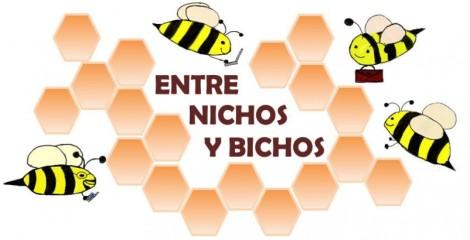 cropped-logo_nichosybichos-2.jpg